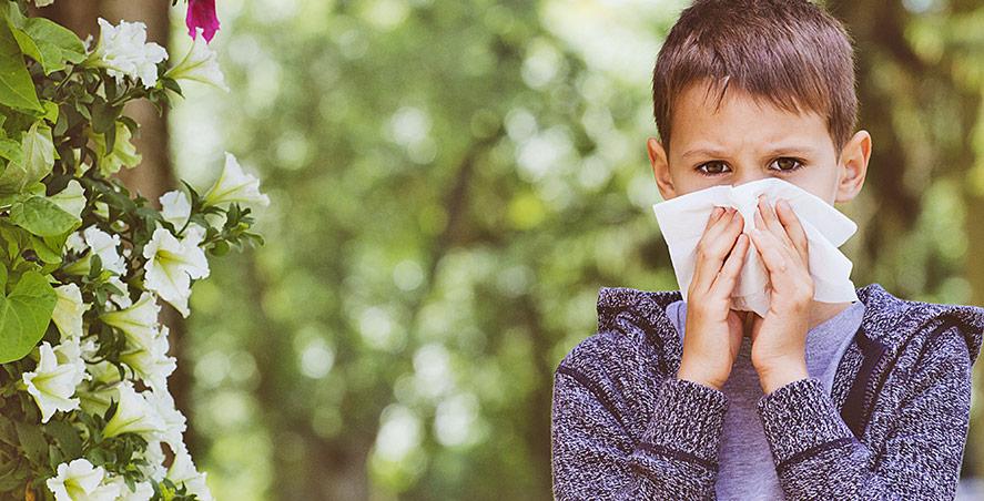 Vad innebär en allergi